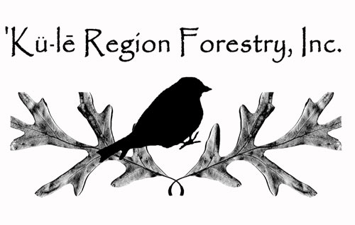Logo of 'Ku-le Region Forestry, Inc.