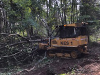 Town Halls to Provide Storm Damage Information & Resources for Landowners